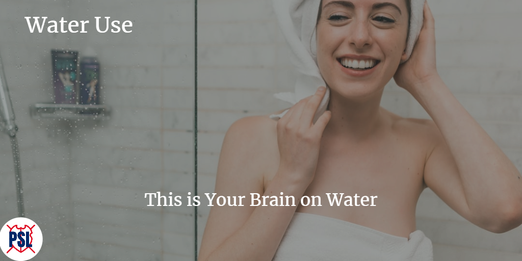 Water Use This is Your Brain on Water