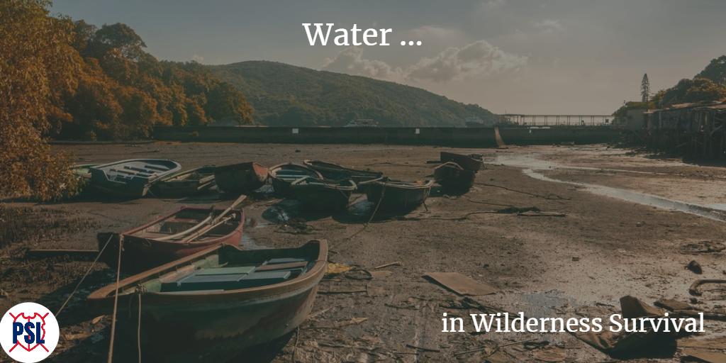 Water in Wilderness Survival